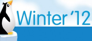 Salesforce Winter Release '12, Starrforce, Salesforce new features